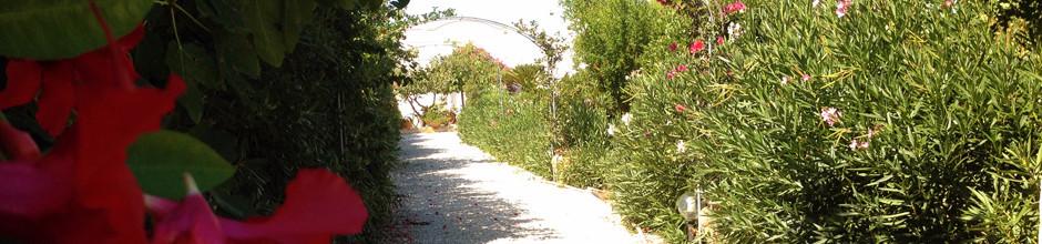 Ingresso-dal-parcheggio-940x220